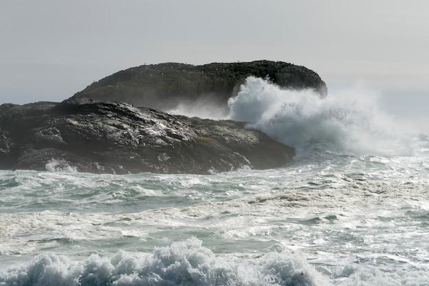 Welle, die auf felsiger küste, pazifische rand-nationalpark-reserve, tofino, vancouver island, britisch spritzt