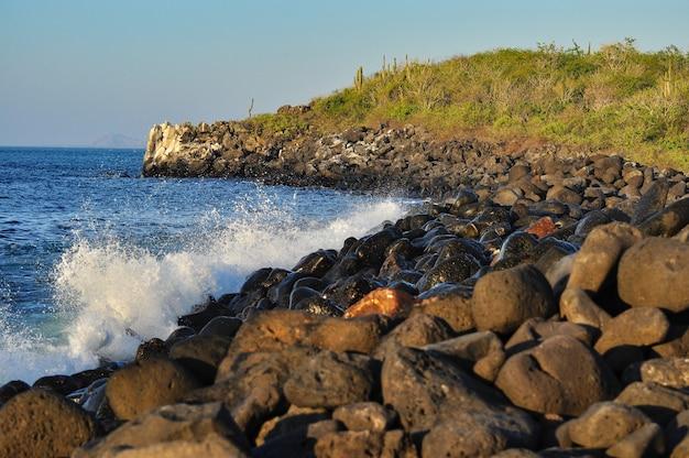 Wellen auf den felsen in galapagos