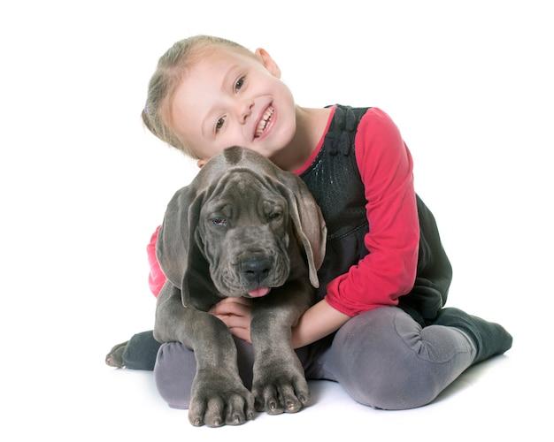 Welpe deutsche dogge und kind