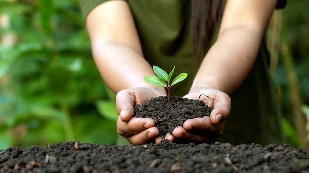 Weltumwelttagkonzept mit mädchen, das kleine bäume in beiden händen hält, um im boden zu pflanzen.