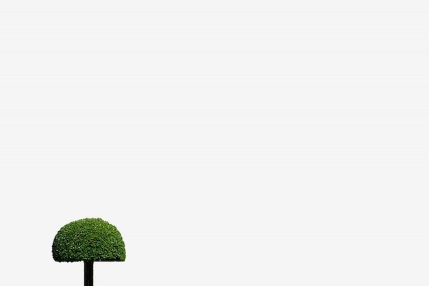 Wenig baumdesign auf isolathintergrundkreis-pilzform in der gartenarbeit Premium Fotos