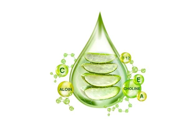 Wesentlich für aloe vera gel-konzept