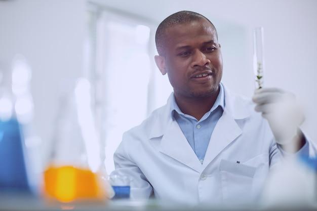 Wichtige aufgabe. inspirierter afroamerikanischer wissenschaftler, der während seiner arbeit im labor einen test durchführt