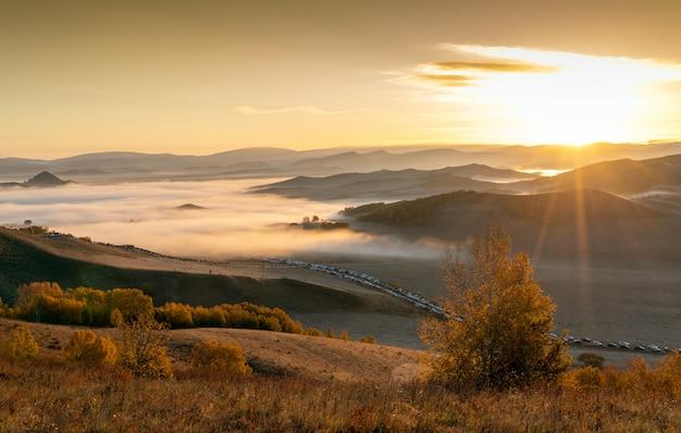 Wiese und berge des frühen morgens