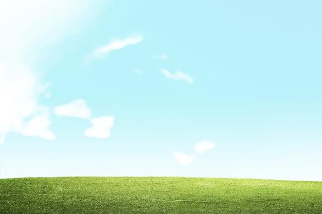 Wiesenfeld mit einem blauen himmelhintergrund