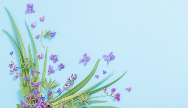 Wilde frühlingsblumen auf blauem papierhintergrund