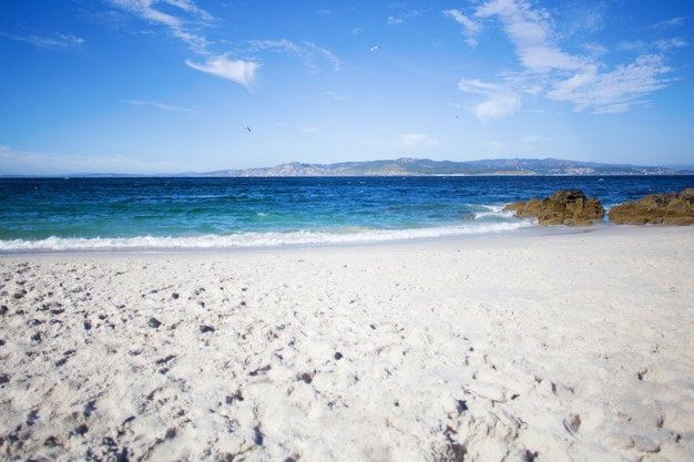 Wilder strand im sommer