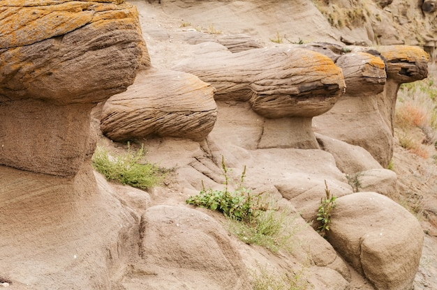 Winderosion von gesteinen Premium Fotos
