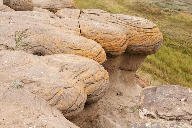 Winderosion von gesteinen