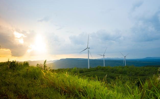 Windkraftanlagen am abend