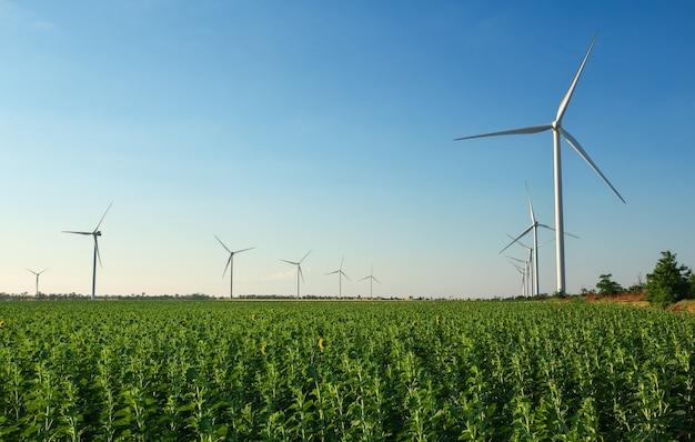 Windkraftanlagen und landwirtschaftliches feld an einem wolkigen sommertag