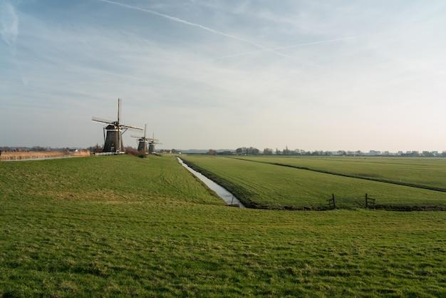 Windmühle in nederland