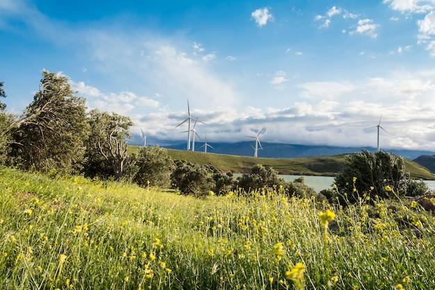 Windmühlen bewirtschaften an der modernen stromerzeugungstechnologie der frühlingsjahreszeit