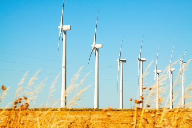 Windpark auf ackerland