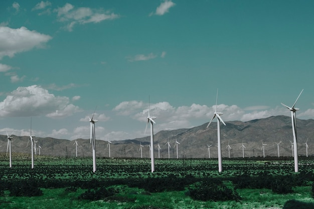 Windpark für nachhaltige und erneuerbare energie