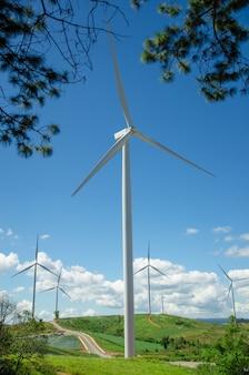 Windturbinenfeld mit blauem himmel