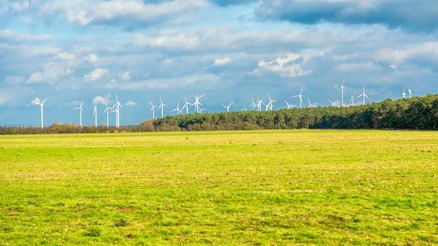 Windturbinenfeld