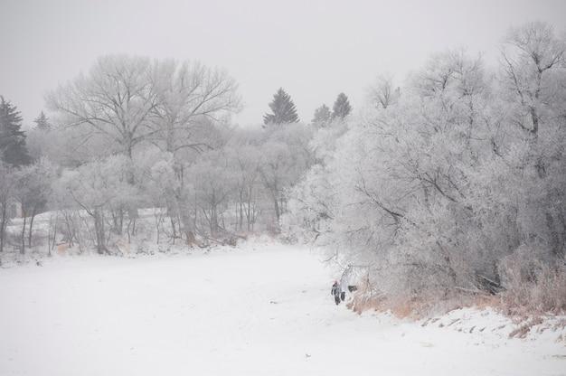 Winnipeg, winterfrost