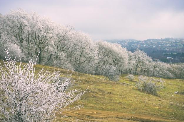 Winter außerhalb der stadt