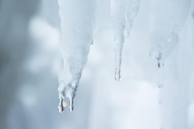 Winter hintergrund. eisstalaktiten, die tropfen