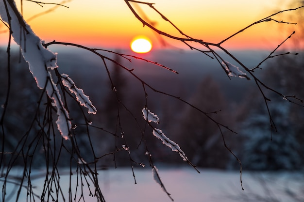 Winter in den bergen.