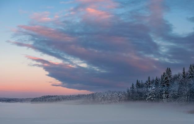 Winter schneesturm bei sonnenuntergang nahe einem wald in nordeuropa. ladogasee karelien.