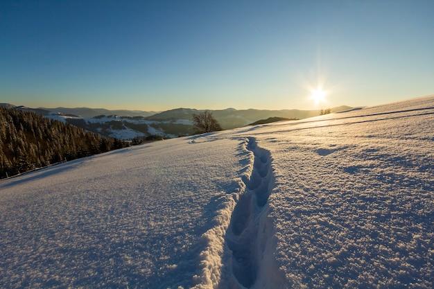 Winter weihnachtslandschaft. menschlicher abdruckbahnweg im weißen tiefen kristallschnee durch leeres feld, waldiger dunkler gebirgszug, weiches glühen auf horizont auf klarem kopienraumhintergrund des blauen himmels.