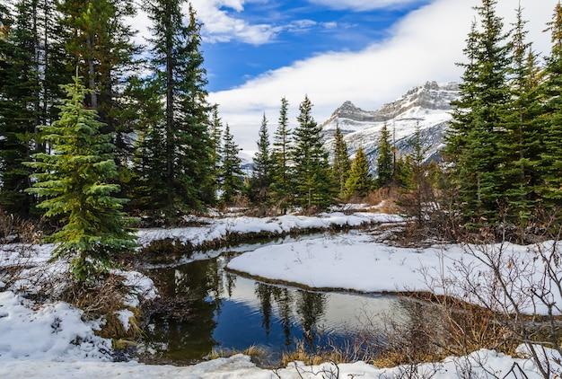 Winteransicht von bow see in nationalpark banff, alberta, kanada