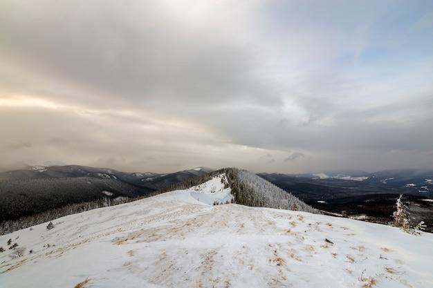 Winterberglandschaft, schneebedeckte spitzen und gezierte bäume unter bewölktem himmel am kalten wintertag.