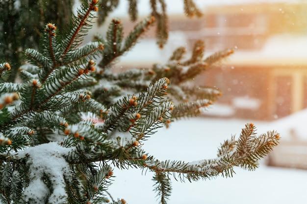 Winterflut, im winter bildeten sich kleine weiße eiskristalle auf dem boden