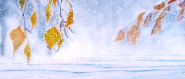 Winterhintergrund, banner, mit gelben birkenblättern auf einem schneebedeckten, unscharfen hintergrund während eines schneesturms