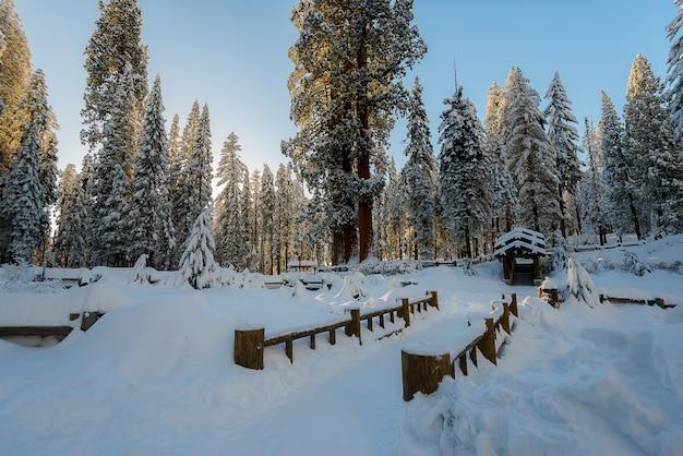 Winterlandschaft auf dem berg morgens