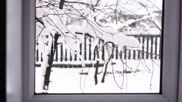 Winterlandschaft durch das fenster gesehen. äste baum unter schnee am frostigen morgen, zaun im hintergrund