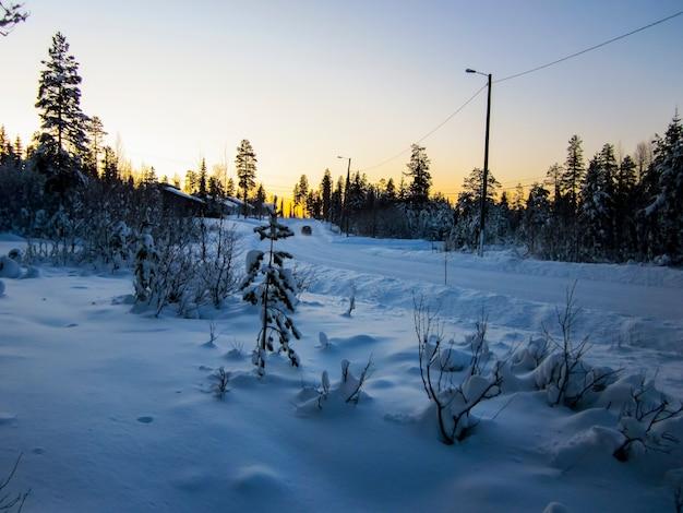 Winterlandschaft im nationalpark oulanka, lappland, nordfinnland