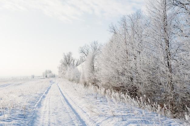 Winterlandschaft mit einer straße und bäumen im frost