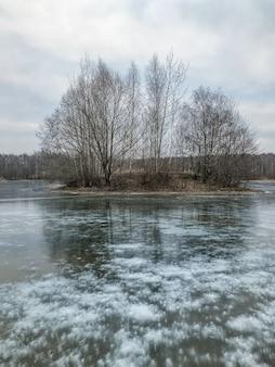 Winterlandschaft mit eisigen luftblasen am gefrorenen see und an der insel mit blattlosen bäumen