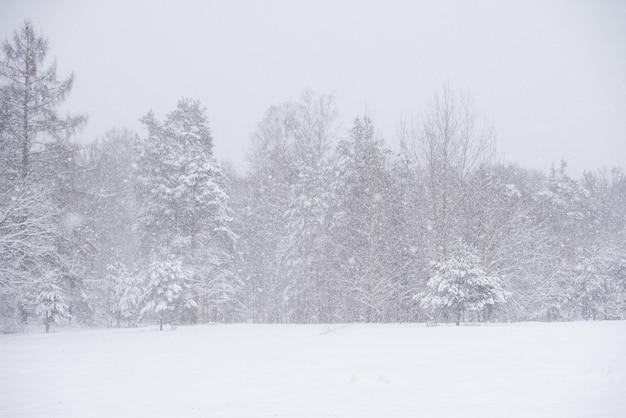 Winterlandschaft mit verschneiten bäumen und schneeflocken.