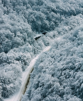 Winterlandschaftsgebirgsstraße im wald