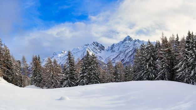 Winterlandschaftspanorama zwischen wald und bergen