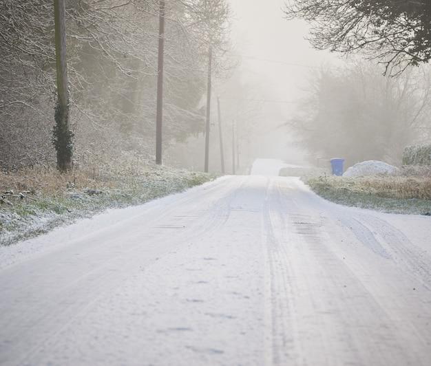 Winterlandstraße mit schneebedeckten nadelbäumen, die während des nebligen morgens in die ferne führen.