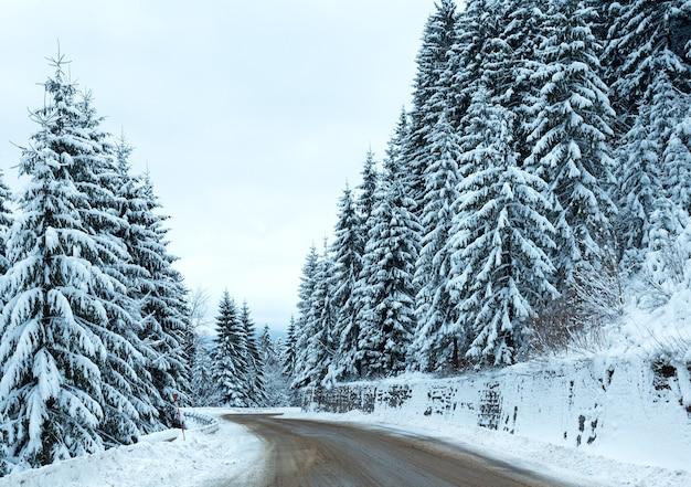 Winterlandstraße mit tannenwald an der seite (bedeckter tag).