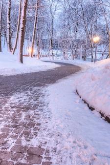 Winterpark bedeckt mit schneegasse unter den bäumen