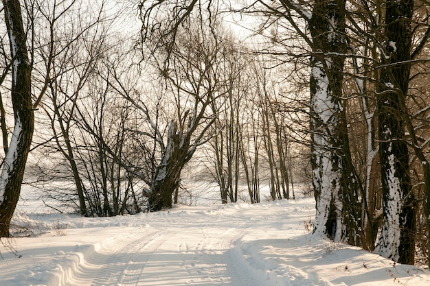 Wintersaison und die straße