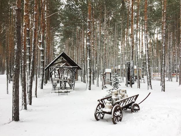 Winterschneekiefernwaldlandschaft mit warenkorb
