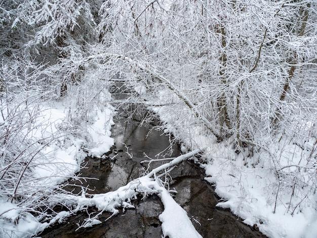 Wintertiefwald mit schmalem fluss. die kraft der wilden majestätischen natur. karelia