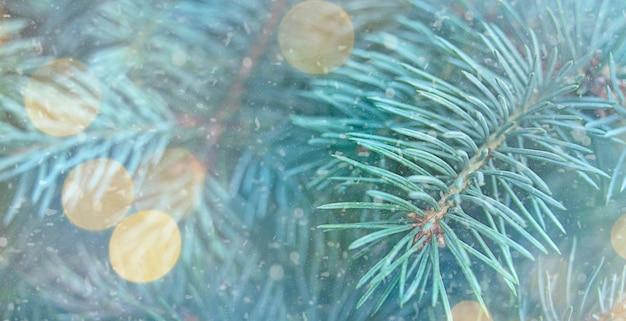 Winterweihnachtshintergrund mit tannenzweigen und schnee. banner. kopie des raumes.