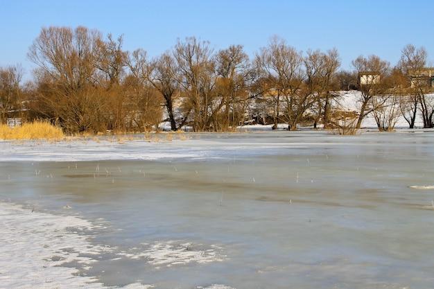 Winterwiese mit gefrorenem wasser und bäumen. ländliche landschaft