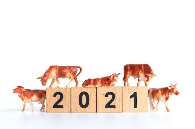 Winziger ochse und holzblock 2021 ist isoliert. symbol des jahres 2021