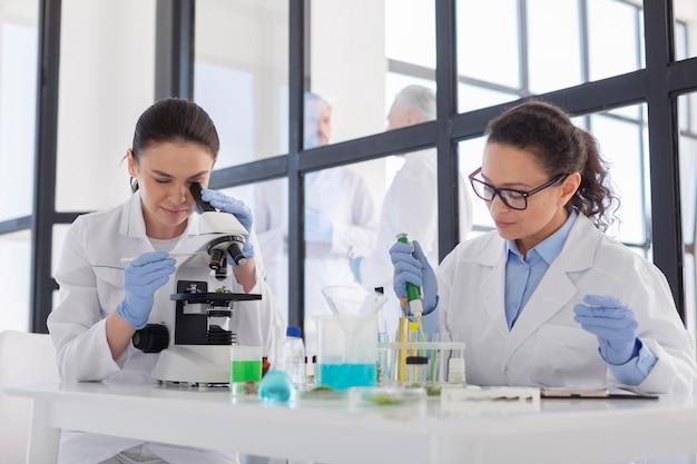 Wissenschaftler arbeiten im labor medium shot