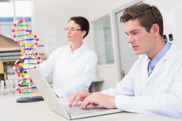 Wissenschaftler, der aufmerksam mit laptop und einem anderen mit dna-modell arbeitet